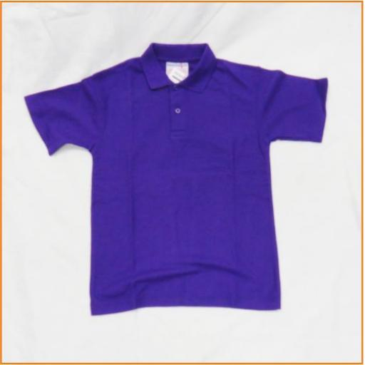 purple polo shirt.jpg