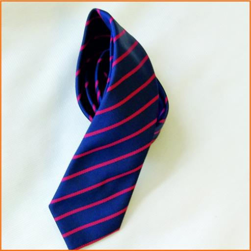 St Paul's School Tie
