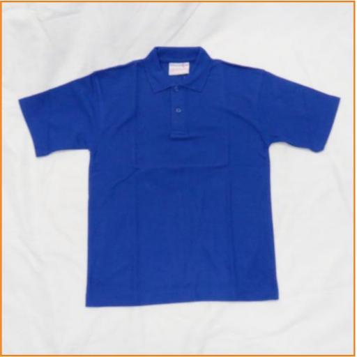 blue polo shirt.jpg